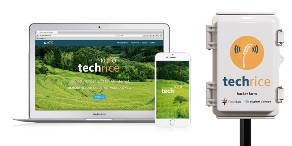 techrice - Logo Design , UI Design