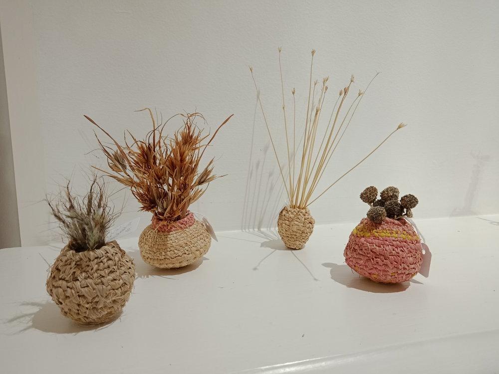 Pollen baskets (detail)