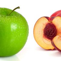 apple or nectarine