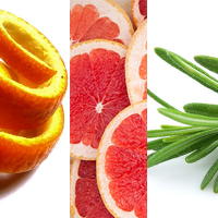 ...twist of orange peel, pink grapefruit or a sprig of rosemary