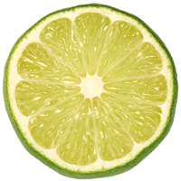 Slice of lime.jpg