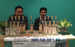 "The independent distillers of Mezcal Ancestral and Oaxaca-based ""3000 Noches"" mezcal, named for the 8 years it takes their agave to mature"