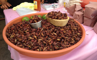 Nothing like a bowl of grasshoppers to start you salivating!