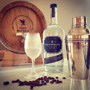 martini cotswolds gin