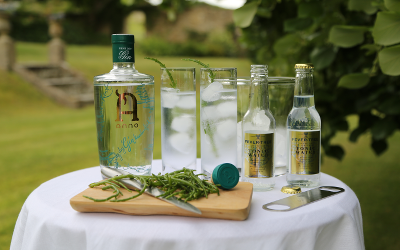 Our Gin of the Month, Anno Kent Dry from Anno Distillers, with Fever Tree and Kentish samphire for the distillers' preferredgarnish.