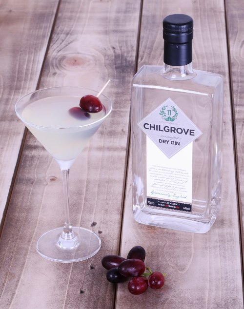 chilgrove dry gin dry martini cocktail