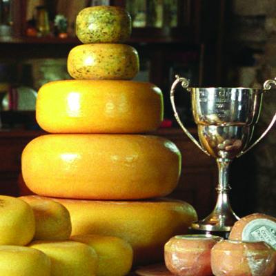 Teifi Cheese's award-winning dairy of mass destruction