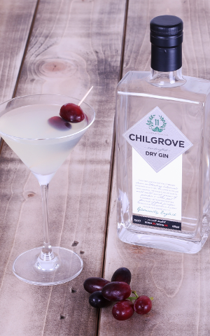 Our June 2015 Gin of the Month Chilgrove Dry scored even more medals at the Gin Masters making it the most awarded gin our members have tasted