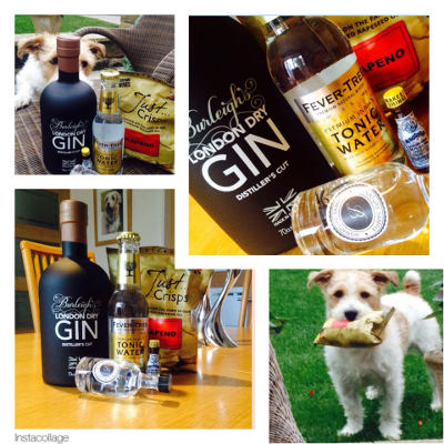 Thanks to club members Jo D. and her dog for these fab pics of Burleigh's surprise gin parcel.