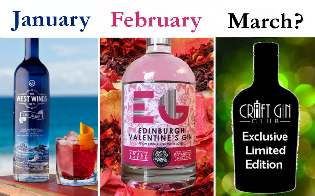 gin of the month craft gin club join