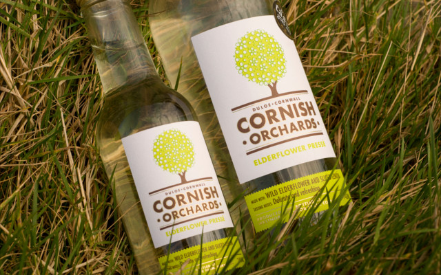 cornish orchard elderflower presse