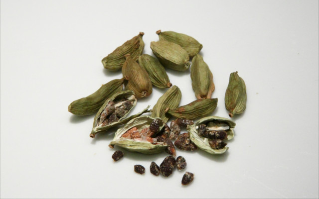 cardamom seeds botanical