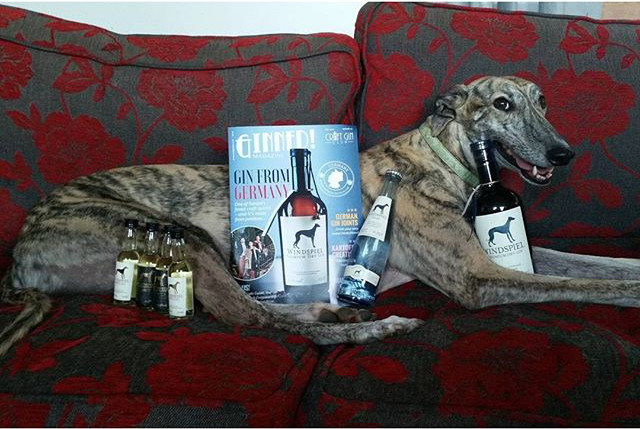 windspiel gin box magazine dog