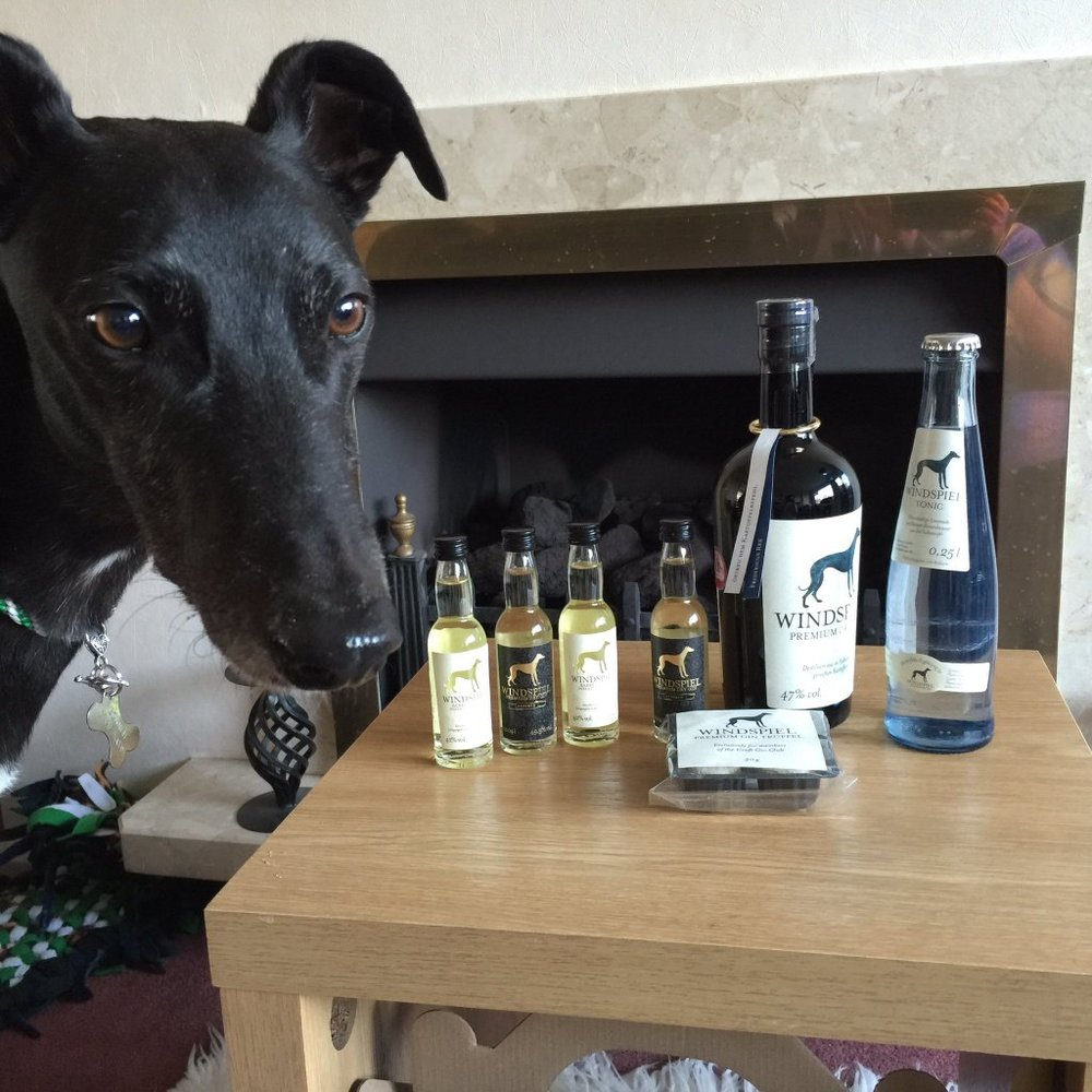 windspiel gin and tonic set dog