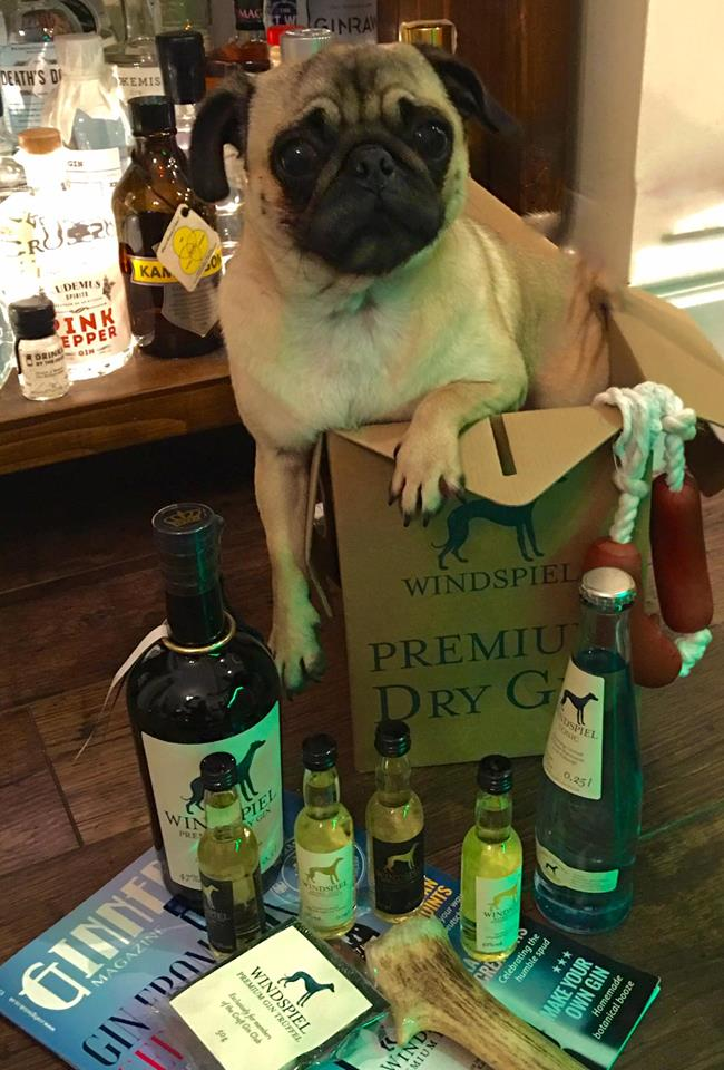 windspiel gin and tonic set dog pug