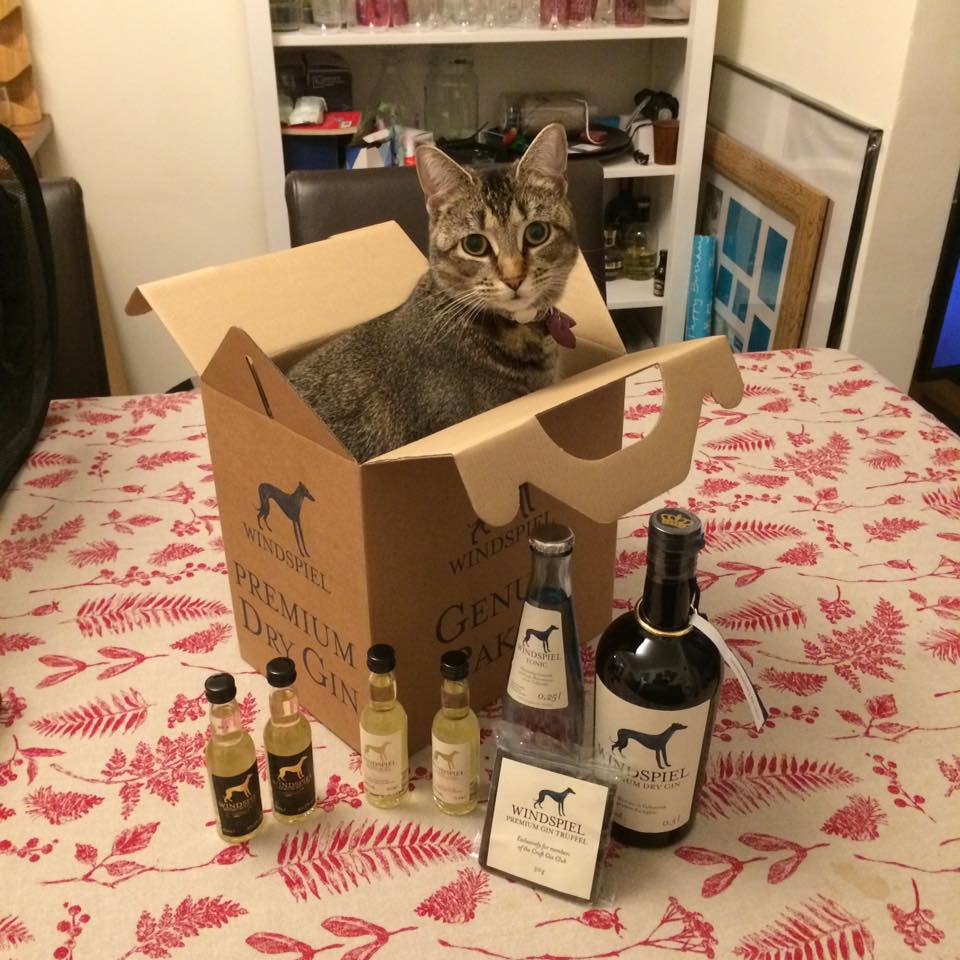 windspiel gin and tonic set cat