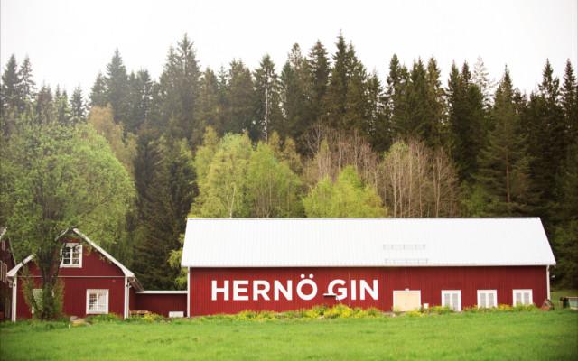 Hernö Distillery's traditional Swedish-style buildings.