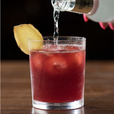 Norse Gin cocktail bar