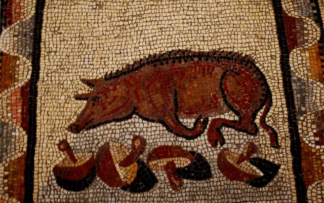 patatas warthog mosaic