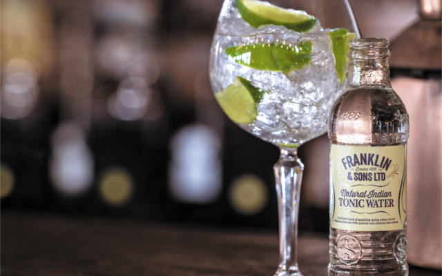 Franklin and Sons Natural Indian Tonic Water with Gin