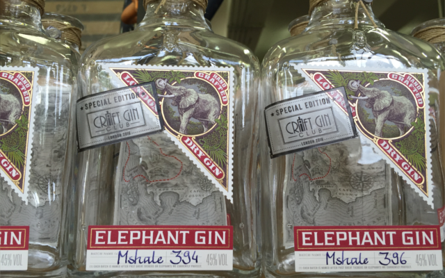 The Craft Gin Club exclusive edition of Elephant Gin, named after the elephant Mshale.