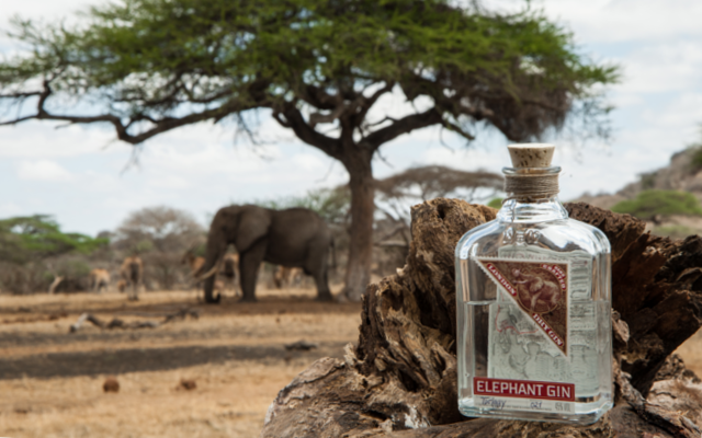 spirit of passion elephant gin