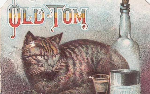 old tom gin