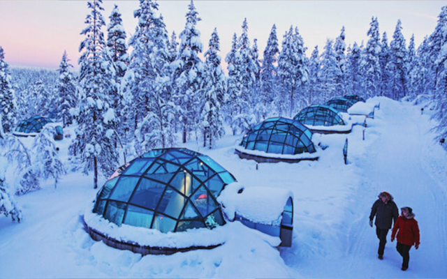 Igloo hotel in finland with lots of snow and conifer trees