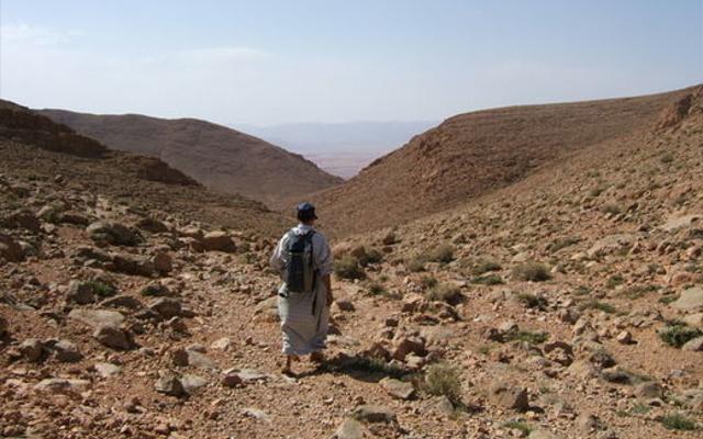 Moroccan desert canyon