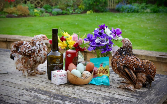 Kongsgaard ginstagram runner up chicken and eggs easter themed picture