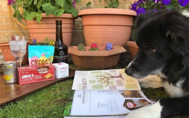 Kongsgaard garden dog reading ginned