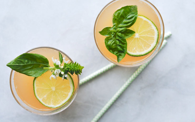 Grapefruit gin punch cocktail drink with mint lime wheel garnish