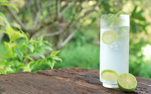 Occitan gin and tonic over ice in a highball glass with slices of lime and mint sprigs on an outdoor table with foliage in background