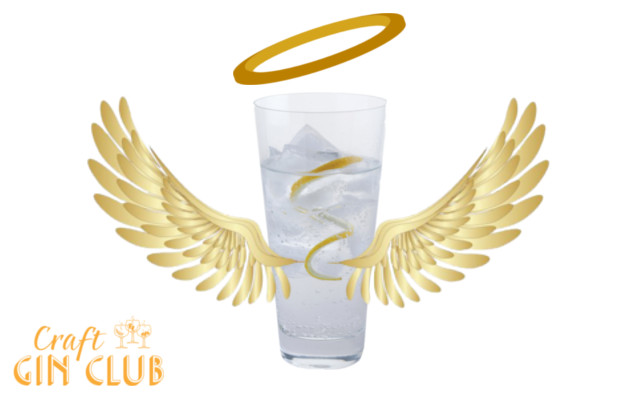Gin and tonic with wings angel drink