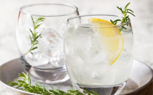 botanical cocktails gin and tonics with rosemary and lemon garnish