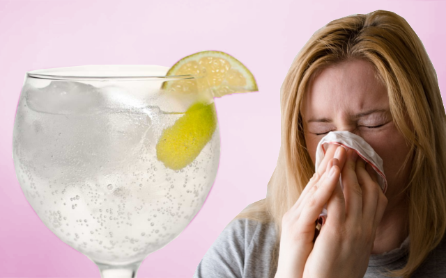 Gin and tonic garnished with lemon helps hayfever sufferers