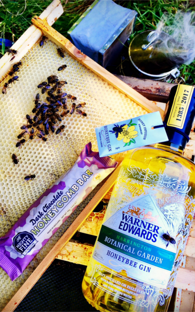 gin ginstagram photo competition bees