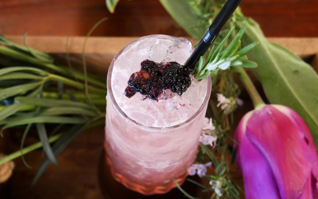gin  cocktail bumble bramble