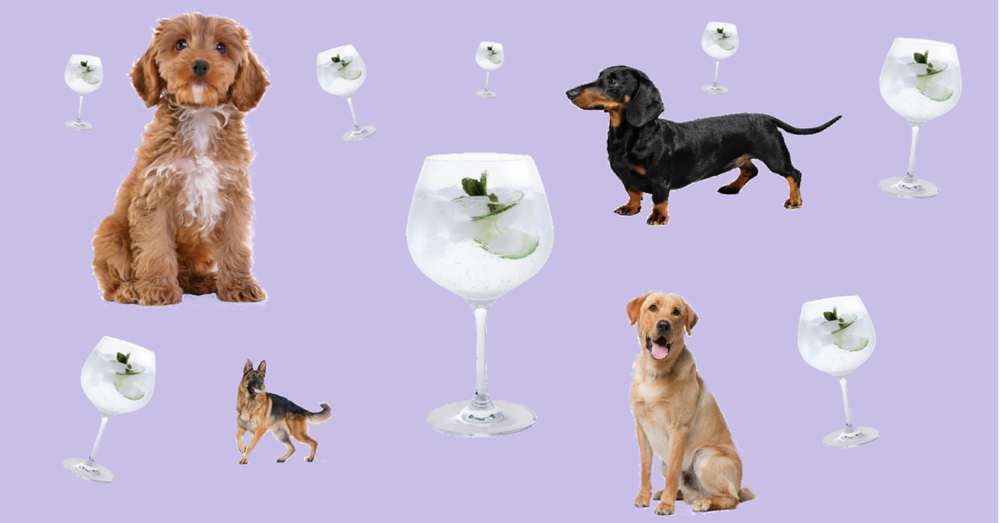 Dogs1200x628.png