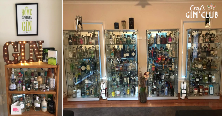 Huge Gin Bottle Collections