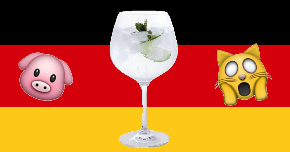 Germany katzenjammer nur ein schwein trinkt allein funny saying drinking hangover cat pig gin and tonic
