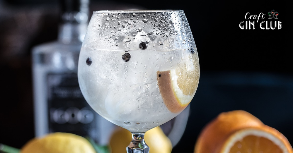 Gin tonic with juniper berries and orange copa glass