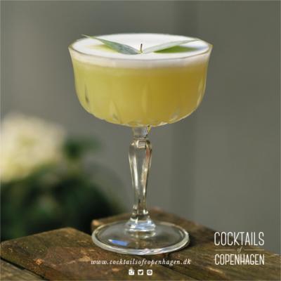 Eucalyptus gin martini bizarre cocktail