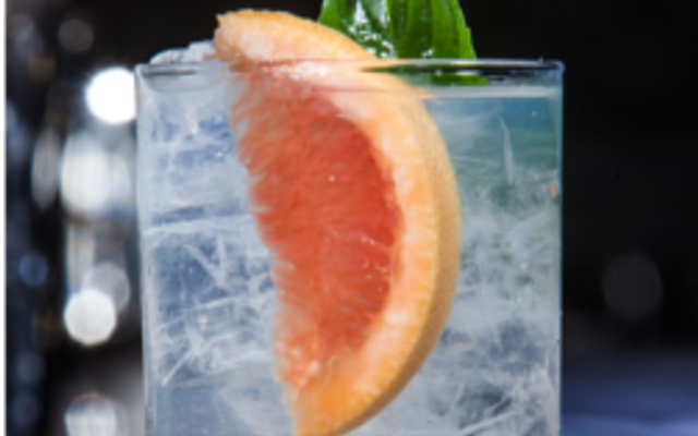Gin and tonic and pink grapefruit