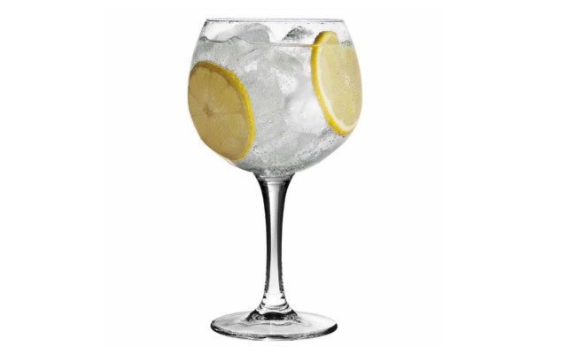 Gin and tonic in copa glass with lemon wheel