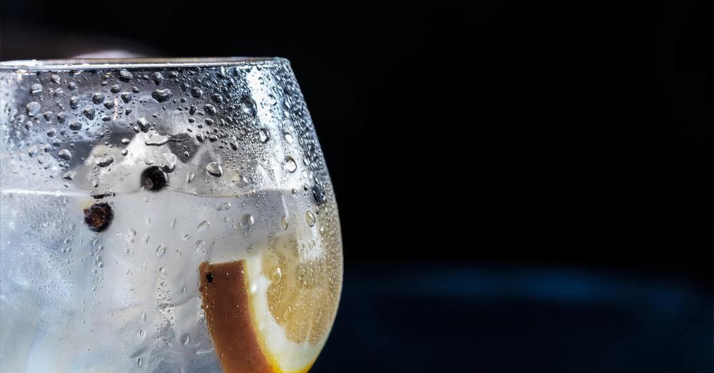 Gin Tonic Orange Juniper Berries Copa