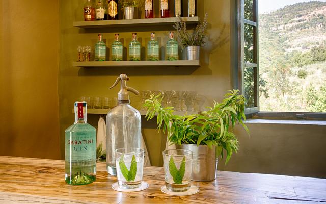 Sabatini Gin Tonic Villa Ugo