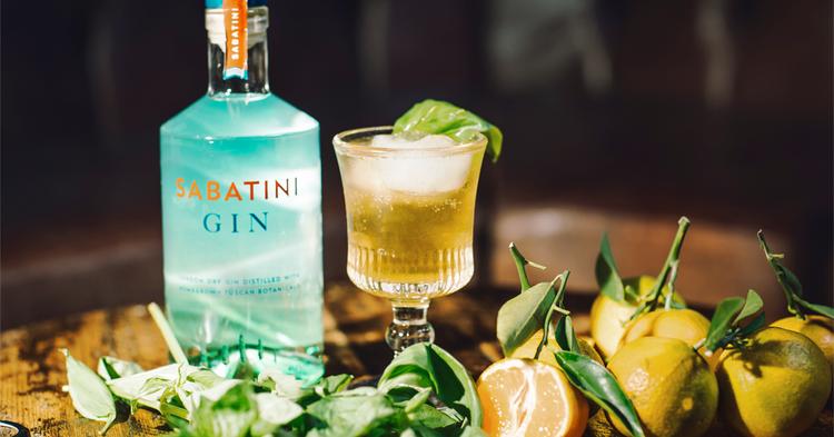 Clementine Sabatini Gin Cocktail