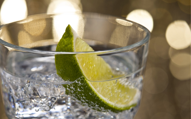gin and tonic with a wedge of lime