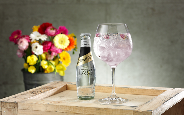 Manchester Pink gin and schweppes lite